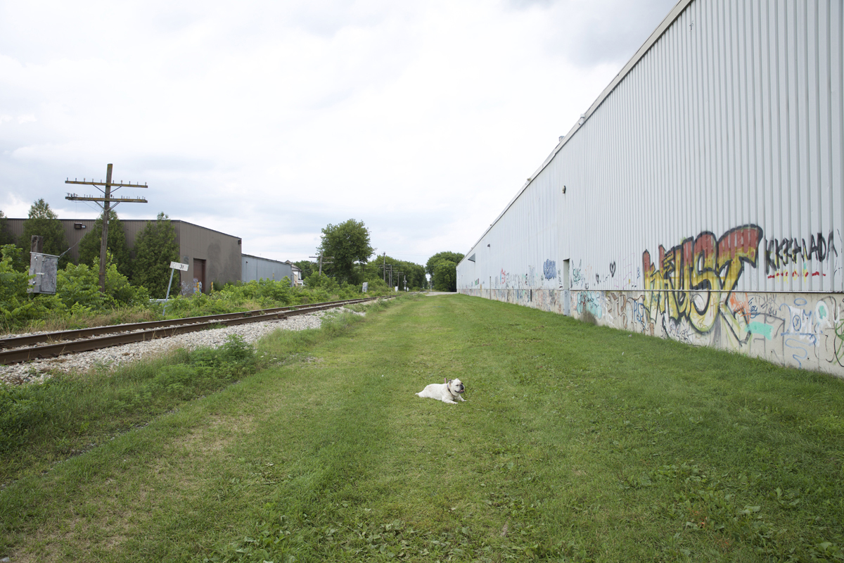 01 The Ward Train Trail - Capture photo 7 - Sounding the City 003 - Guelph 2018