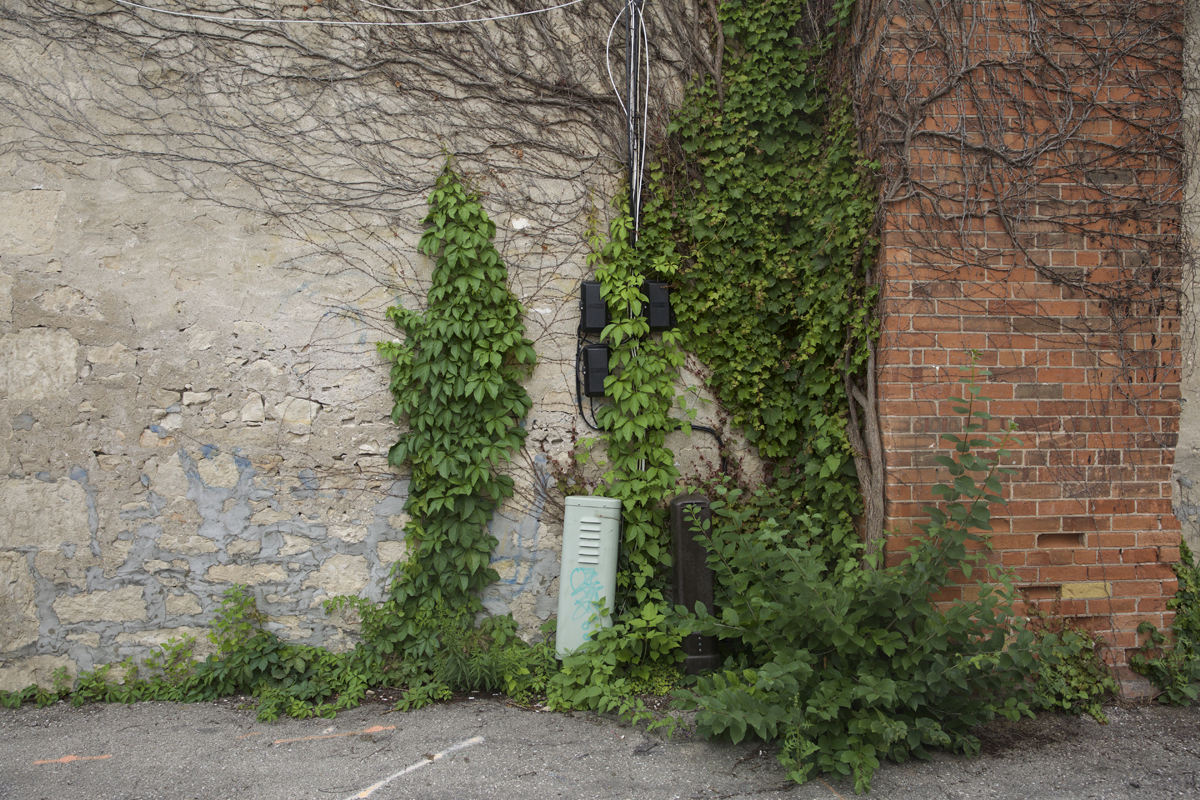 02 Douglas Street Alleyway - Capture photo 6 - Sounding the City 003 - Guelph 2018