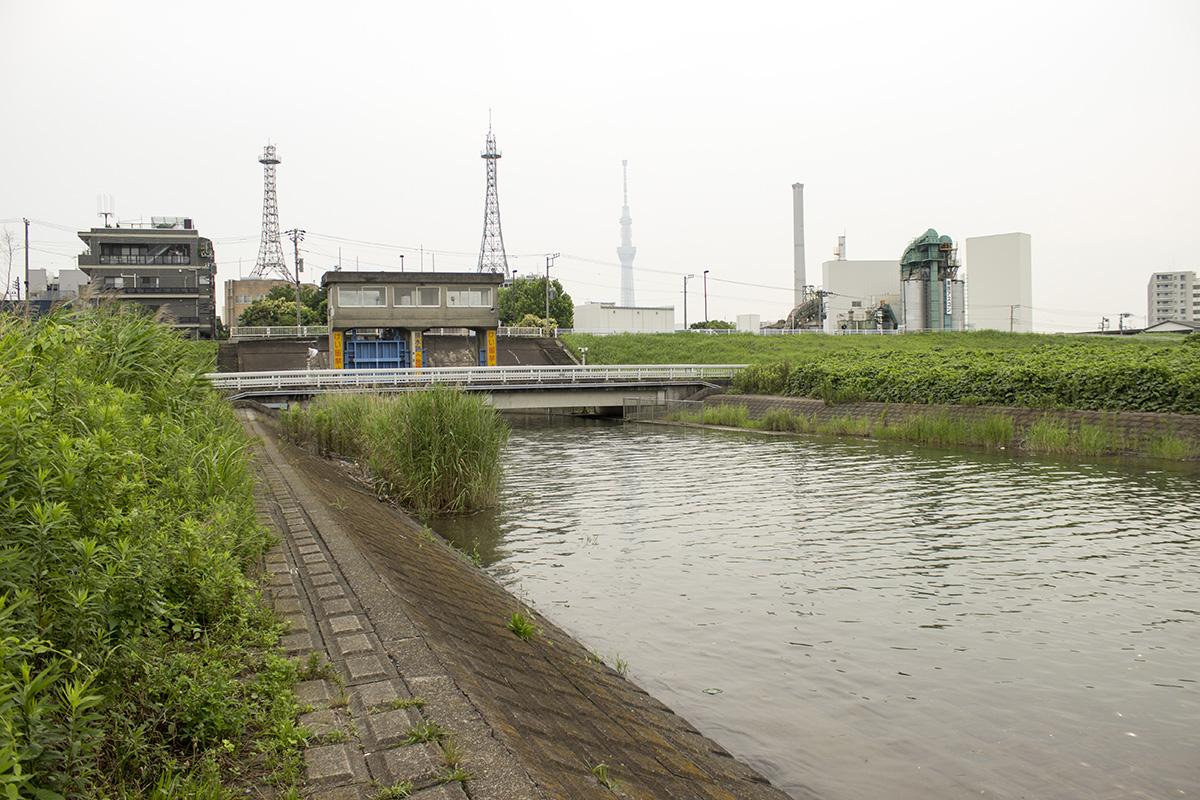 01 Arakawa River - Higashisumida - Installation photo 7 - Sounding the City 005 - Sumida-ku 墨田区 2019
